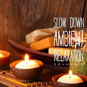 Slow Down Ambient Relaxation, Vol. 3 by Various Artists