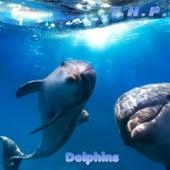 Dolphins de Thp