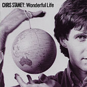 Wonderful Life by Chris Stamey
