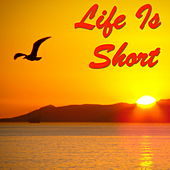 Life Is Short by Various Artists