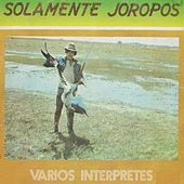Solamente Joropos de Various Artists
