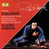 Puccini: Turandot (Highlights) by Various Artists