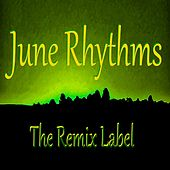 June Rhythms de Various Artists