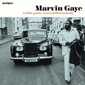 A Little Party Never Killed Nobody - Summer Jam von Marvin Gaye