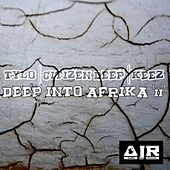 Deep Into Afrika, Vol. 2 by Various Artists