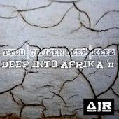 Deep Into Afrika, Vol. 2 de Various Artists