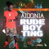 Rude Boy Ting by Aidonia