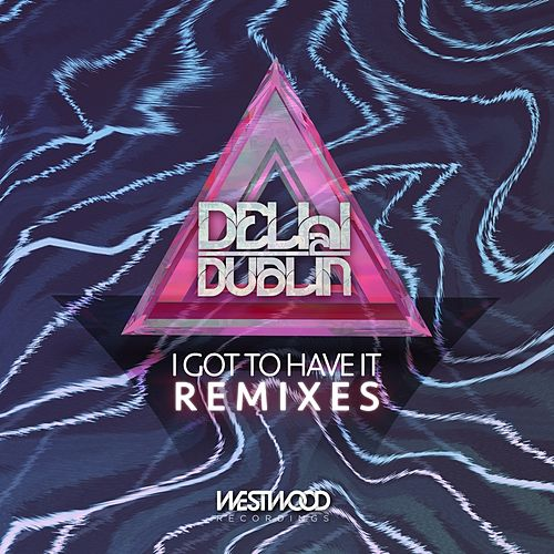 I Got to Have It by Delhi 2 Dublin