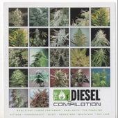 Diesel Compilation: Sickbay Records von Various Artists
