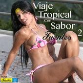 Viaje Tropical Con Sabor Fuentes 2 by Various Artists