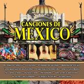 Canciones de Mexico Vol. X by Various Artists