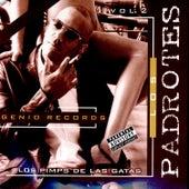 Los Pimp De Las Gatas Vol.2 van Various Artists