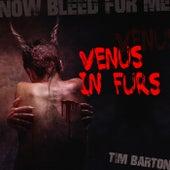 Venus In Furs von Tim Barton