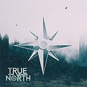 The Sky, the Lie, and Who We Are Before We Die de True North