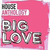 Big Love House Anthology - EP by Various Artists