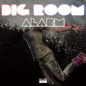 Big Room Alarm, Vol. 7 von Various Artists