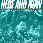 Here and Now: A Hardcore Compilation de Various Artists