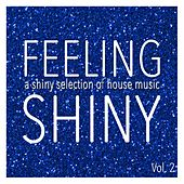 Feeling Shiny, Vol. 2 - Shiny Selection of House Music by Various Artists