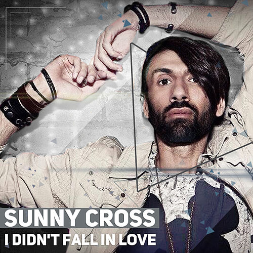 I Didn't Fall in Love by Sunny Cross