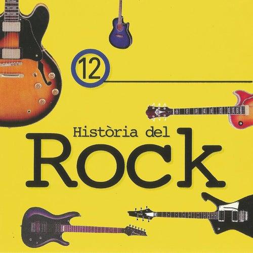 Història del Rock 12 de Various Artists