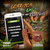 Los Corridos Mas Chi...De Mi Playlist Puros Exitos by Various Artists