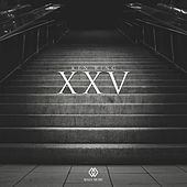 Xxv by Ken Ring