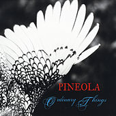 Ordinary Things by Pineola
