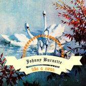 Like A Swan by Johnny Burnette
