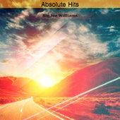 Absolute Hits de Big Joe Williams