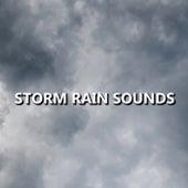 Storm Rain Sounds by Ambient Rain
