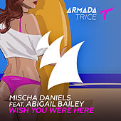 Wish You Were Here by Mischa Daniels