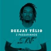 2 Passarinhos by DJ Télio