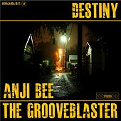 Destiny (feat. Anji Bee) by The Grooveblaster
