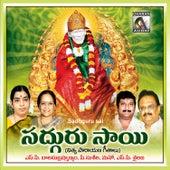Sadhguru Sai by Various Artists