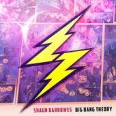 Big Bang Theory by Shaun Barrowes