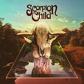 Acid Roulette de Scorpion Child