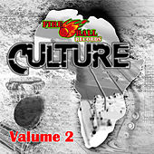 Culture, Vol. 2 by Various Artists