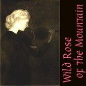 Wild Rose of the Mountain de David Kuncicky