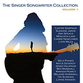 Singer-Songwriter Collection Volume 1 von Various Artists