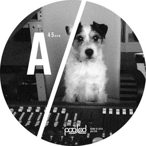 Turakina EP de Ian Pooley