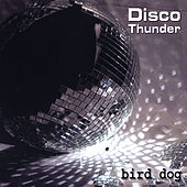 Disco Thunder by Birddog