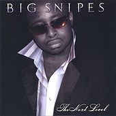 The Next Level by Big Snipes