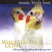 Music Birds Love: While You Are Gone by Bradley Joseph