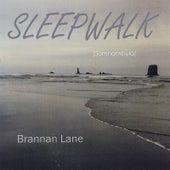 Sleepwalk - Somnambula by Brannan Lane