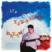 It's A Teenager Dream de Dominique Blanc-Francard