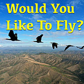 Would You Like To Fly? by Various Artists