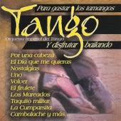 Tango para Gastar los Tamangos y Disfrutar Bailando by Orquesta Imperial Del Tango
