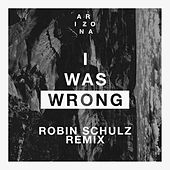I Was Wrong (Robin Schulz Remix) by A R I Z O N A