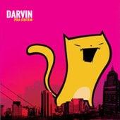 Pra Ontem by Darvin