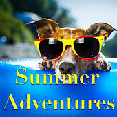 Summer Adventures by Various Artists